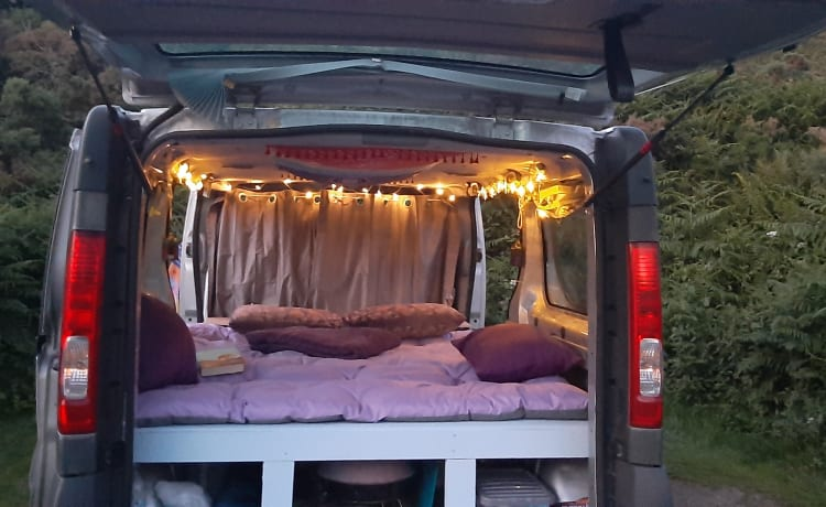 Mica - Quirky bird – 2 persoons King size bed Renault traffic
