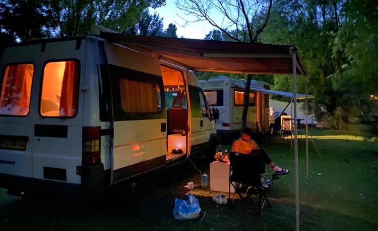 De Zwaluw – Sfeervolle bus met zonnepaneel en veel leefruimte
