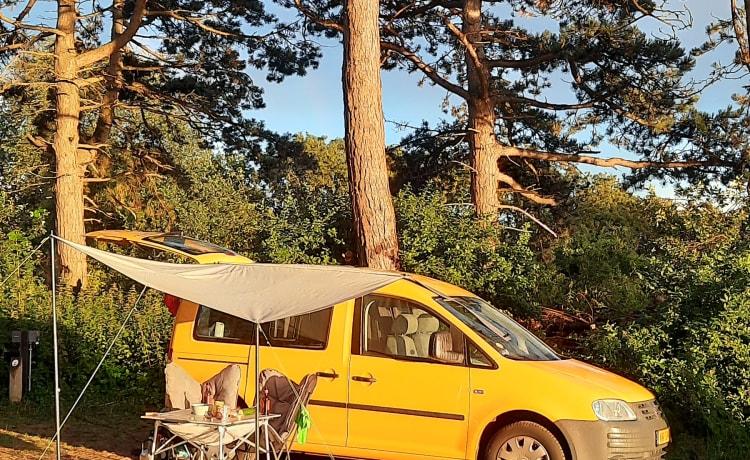 Zonnetje – Mini camper voor maximaal genot