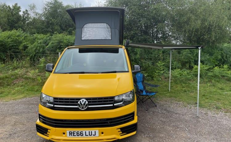 Bee – VW CamperVan T6