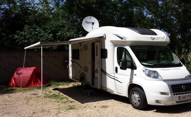 petermobiel – Blissful camper for rent!