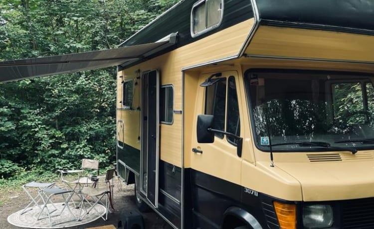 Bagus – Heerlijk ruime, gezellige 3-persoons camper