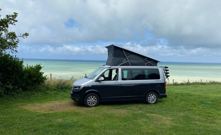 VW California T6.1 Ocean - Grijs/Blauw - Automaat