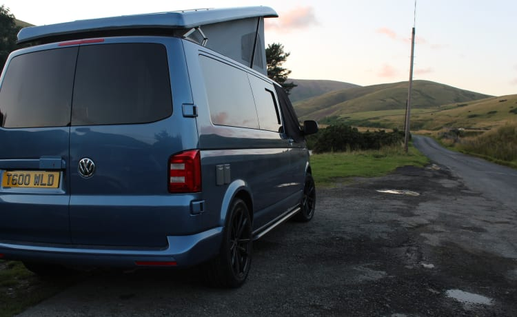 Kyle – Into The Wild Camper Hire - VW T6 LWB Camper with Pop Top