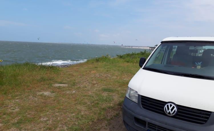 T4 Volkswagen Camper