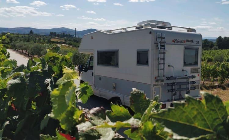 Daurum Campervan – Douro Camper