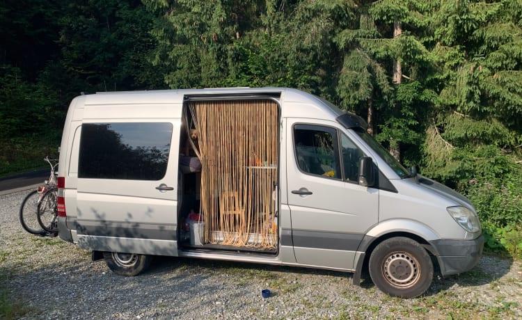 Camper busje | Mercedes Sprinter