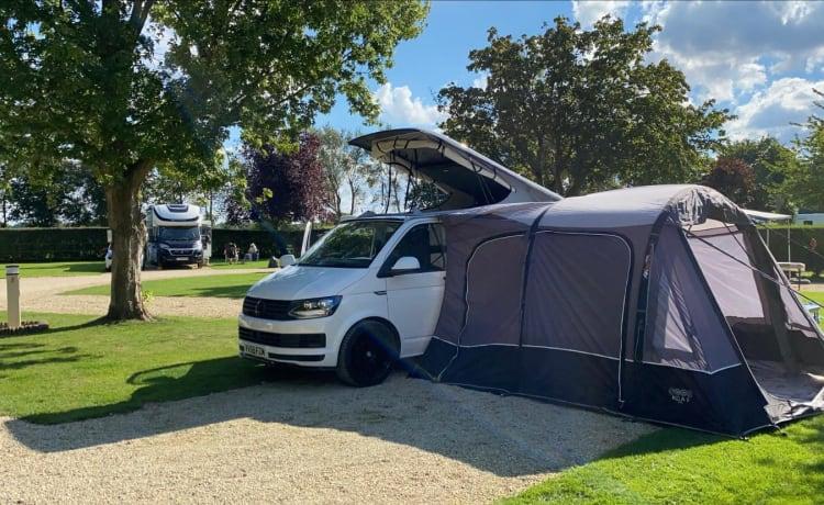 VW-camper van 2018