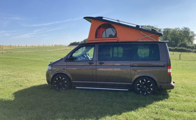 Bernie Brown  – Start je campervakantie met Bernie [VW 5.1 TRANSPORTER CONVERSIE]