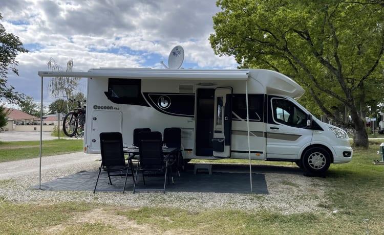 New camper (2021) benimar cocoon 463 automatic 170 hp