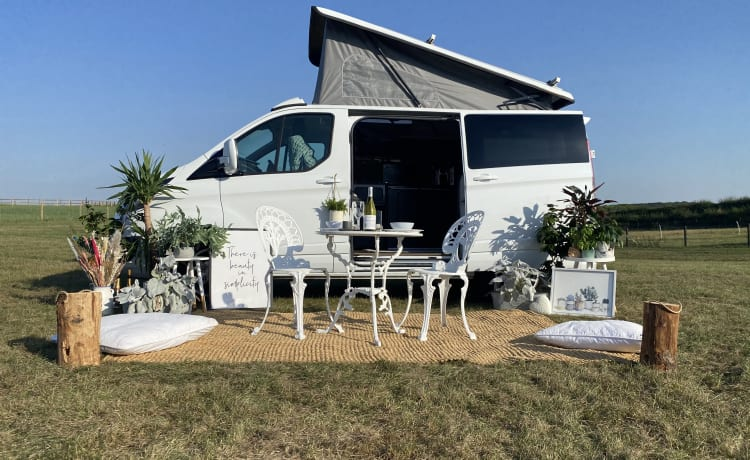 Winnie White  – Start uw campervakantie met Winnie [Ford Transit Custom Conversion]