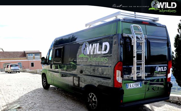 WildAdventures traveling on road ALL INCLUSIVE