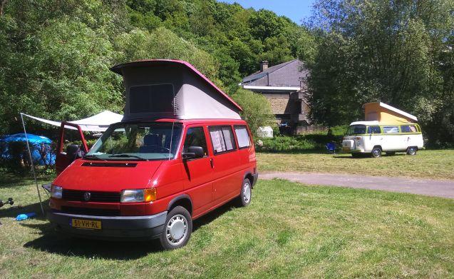 Klassieke T4 Westfalia voor Nederland