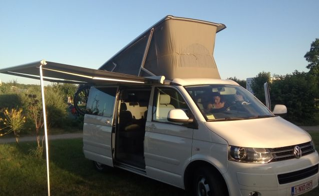 Volkswagen T5 California fourmotion