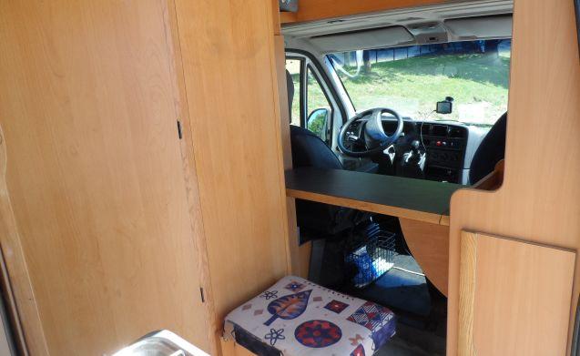 Knusse compacte camper waar huisdieren in zijn toegestaan