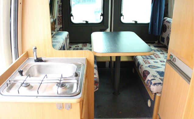 Cozy compact camper where pets are allowed