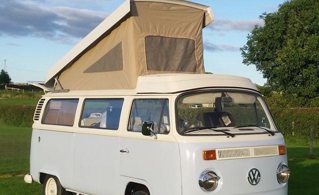 Yorkshire VW Camper