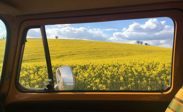 mellow yellow – Groovy hippiebus volkswagen T2 mellow yellow