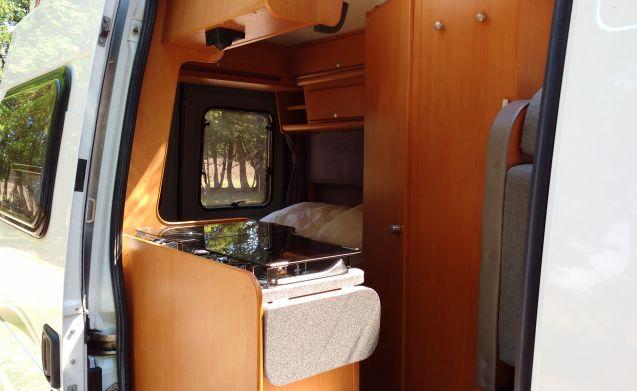 Weg van de snelweg – Deze compacte en handzame camper is er niet alleen voor weidse landschappen