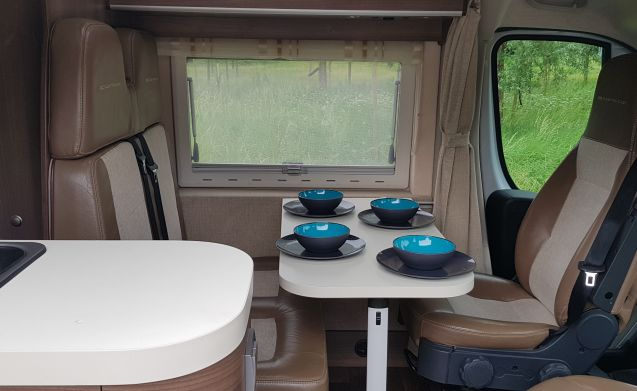 Globy – Globe-Traveler Pathfinder X, the unique bus camper with 4 berths