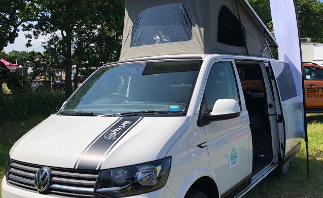 Betsy – Betsy 4 Berth VW Transporter T6