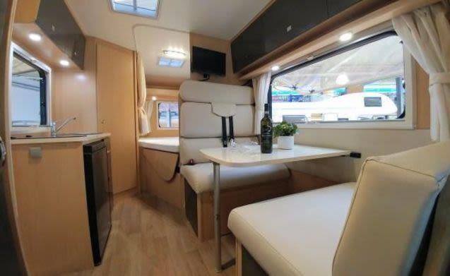 A-type – New spacious 2 - 4 person camper, fixed bed, navi