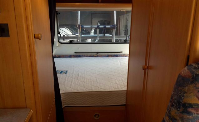 Onze hut – Nice spacious / complete 4-person alcove camper with satellite TV