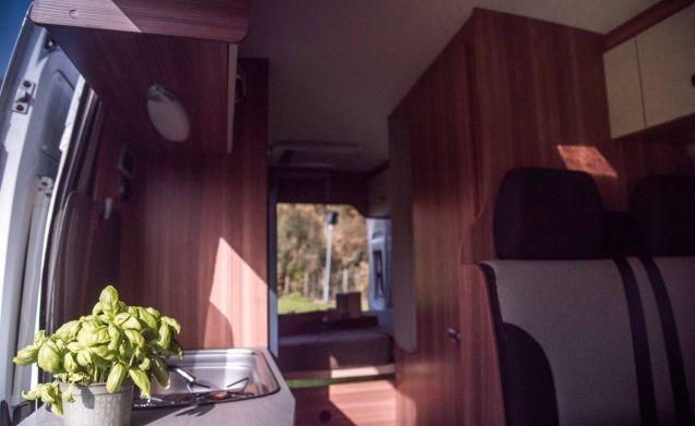 Beautiful new bus camper / SC4