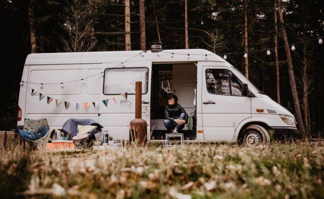 Perfect voor de winter – Camper Lars: easy driving, spacious interior - UNIQUE