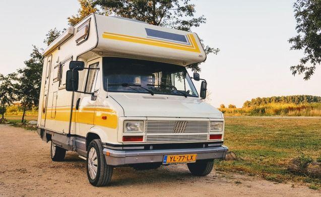 "Meet ""Mellow Yellow"": Retro camper for adventurers. Pets allowed!"