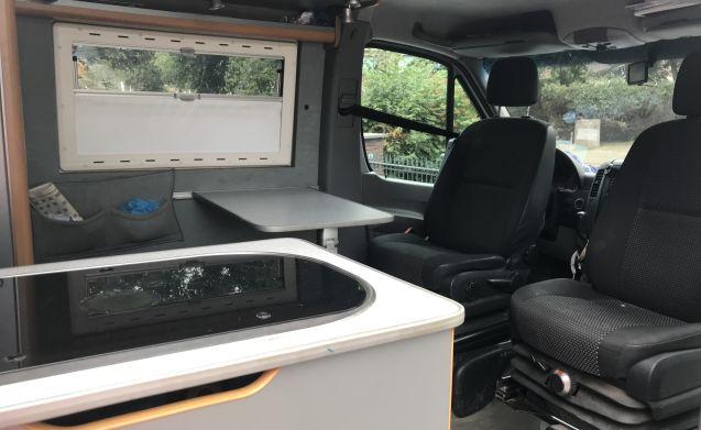 MB Sprinter 318 CDI (184hp) Full Option Bus Camper !! 210cm high !!