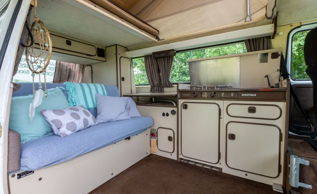Goboony Camper – The only real Goboony camper