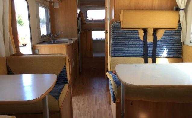 Etagenbett Wohnmobil : Miete dieses ford wohnmobil mit leuten in hoorn ab u ac pro tag