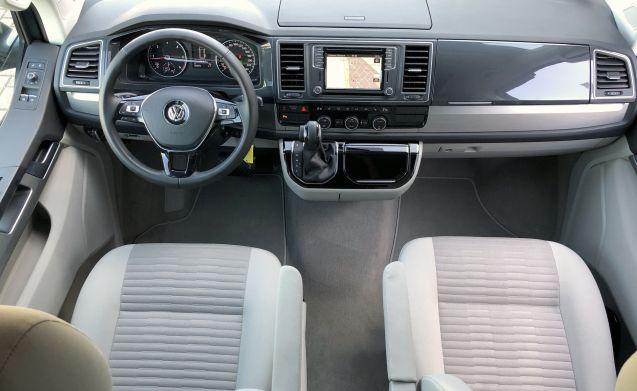 VW T6 California OCEAN 150 DSG or manual
