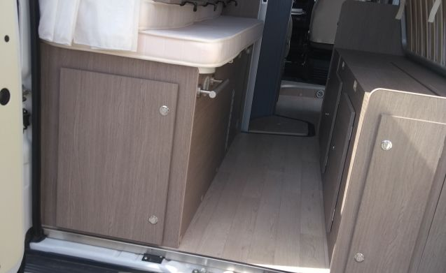CHAUSSON Exclusive V597CS