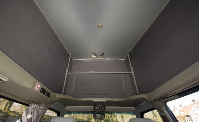 Mare - VW T4 California accogliente e robusto con tetto a pelo