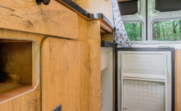 Villa Kakelbont  – Accogliente autocaravan Ford a 2 posti