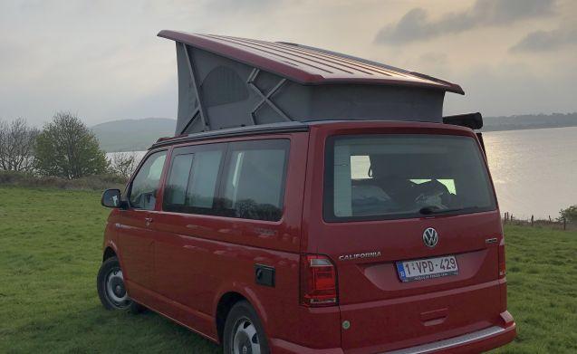 VW California Ocean 4WD aut. Splinternieuw!