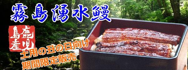 うなぎ(メイン-下部)