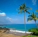 Sun and snorkel (beautiful coral and seal turtles) on the beach off your lanai.