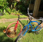 2 bikes are available.