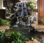 Waikiki Banyan Lobby Koi pond