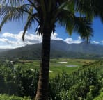 The Hanalei valley from the lookout right opposite the Princeville shops