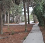 Paved walkway to beach access