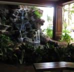 Waikiki Banyan Lobby area