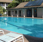 Kihei Kai Nani pool