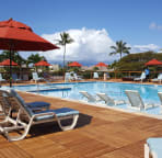 Newly renovated salt water large pool