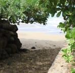 Sugar Cove beach access