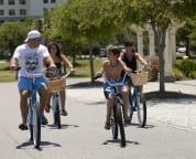 Bike away in the Gulf Breeze!