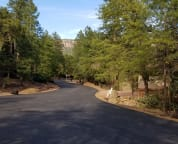 The road into the cabin